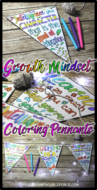 How to get your students positive about learning using Growth Mindset Pennants! www.teachersresourceforce.com